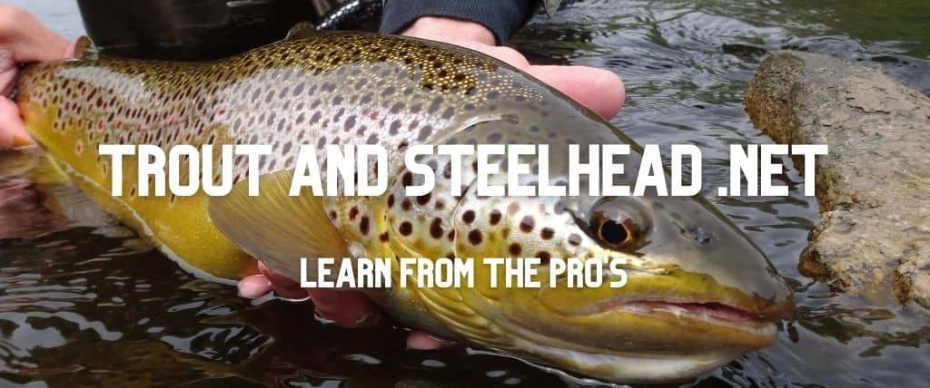 Trout and steelhead fishing tips and advice