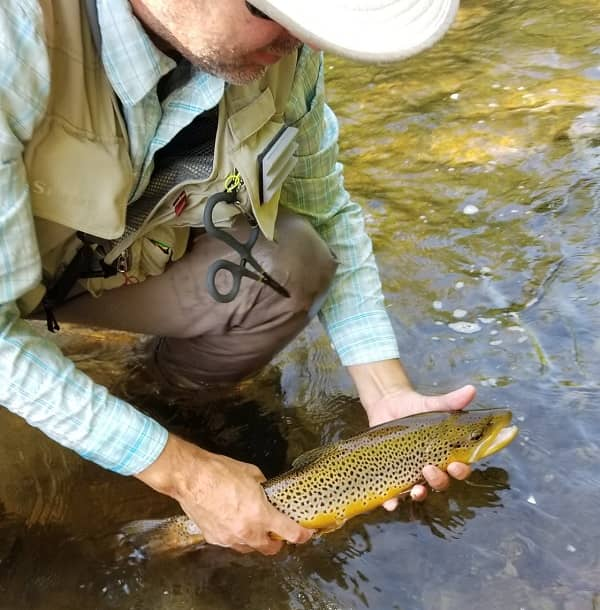 Catch more trout with fly fishing