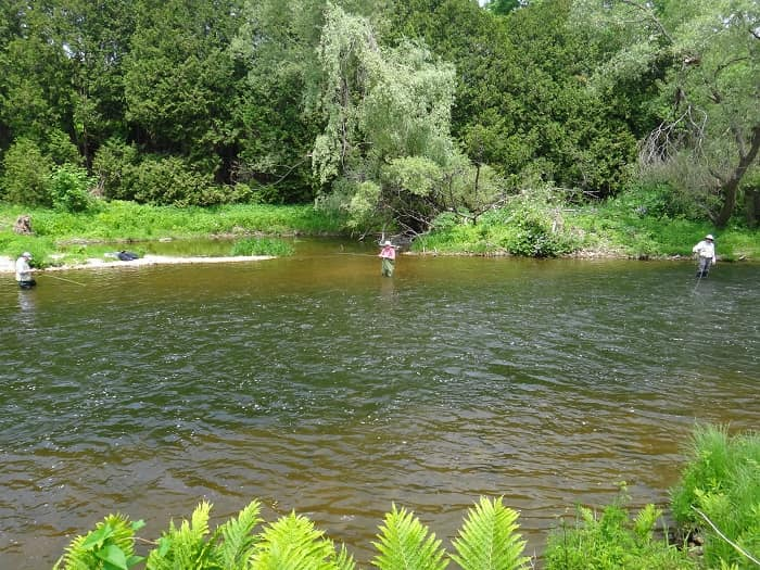 A Good Trout Pool