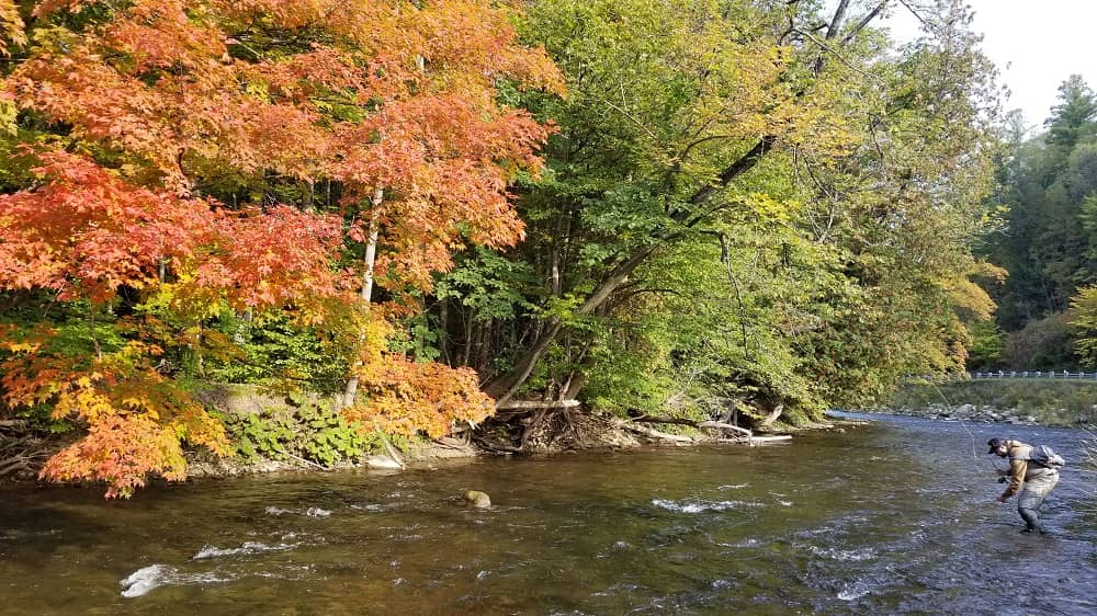 Fall Is Good For Trout Fishing