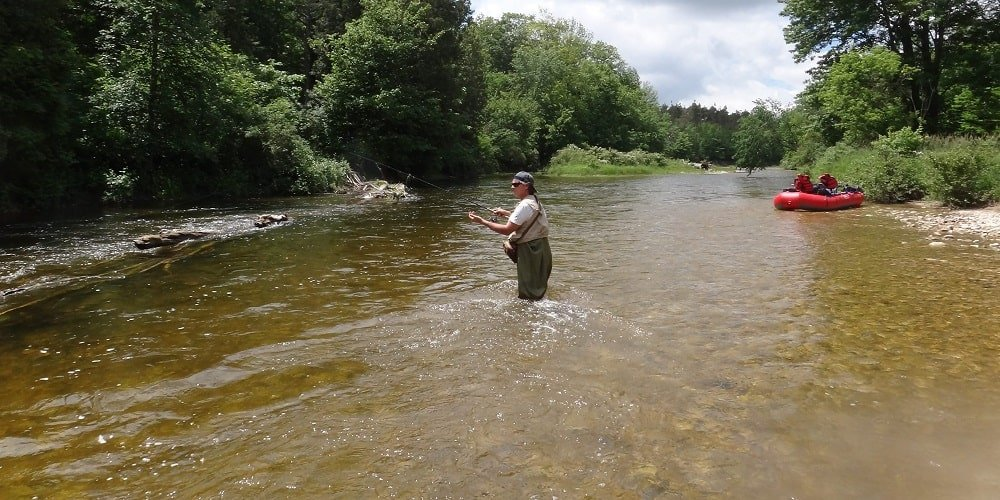 Methods for fishing trout bait