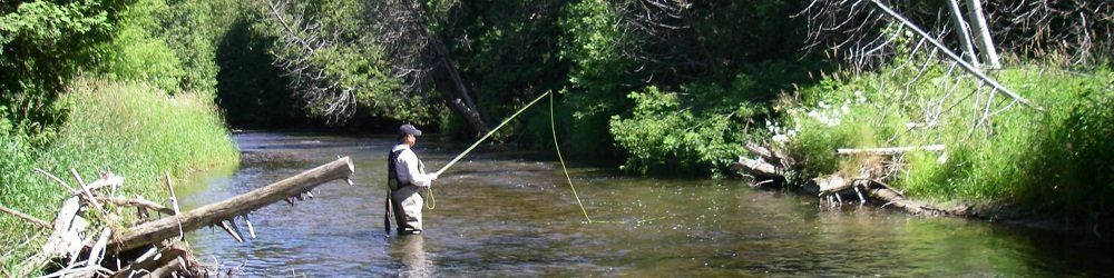 A floating fly line is best on most rivers..
