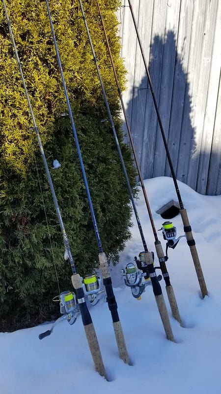 Multiple guide spinning rods ready to go