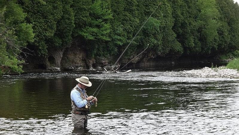 An angler with a long leader