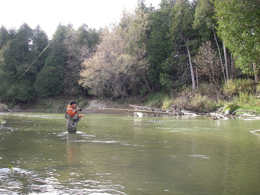 An angler using the right pound test leader for steelhead on a wooded rivers