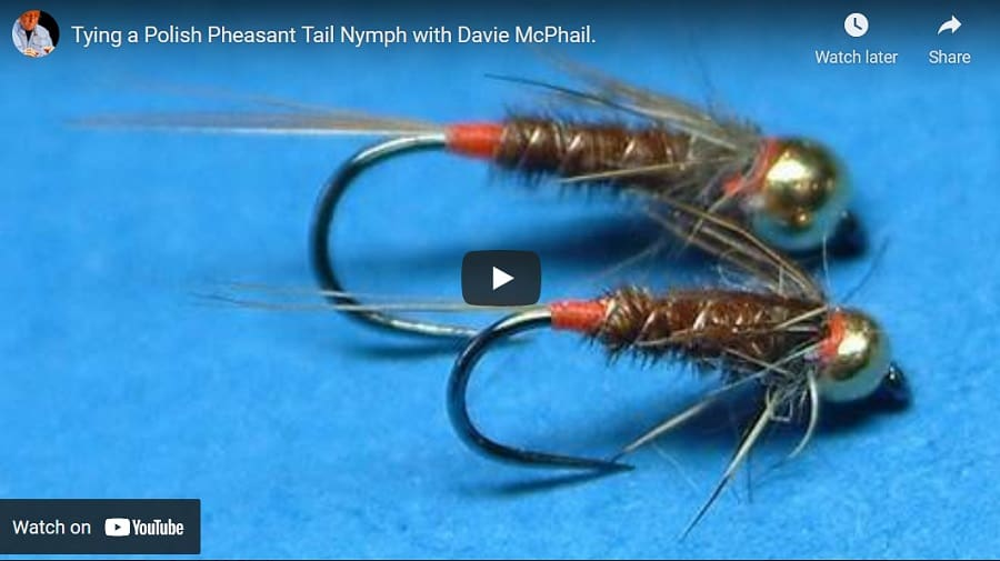 The Polish Pheasant Tail Nymph is one of my best spring trout flies