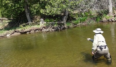 How To Catch More Trout And Steelhead Guaranteed
