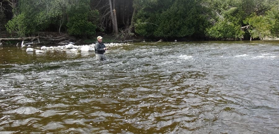 The best way to catch steelhead in some water is fly fishing