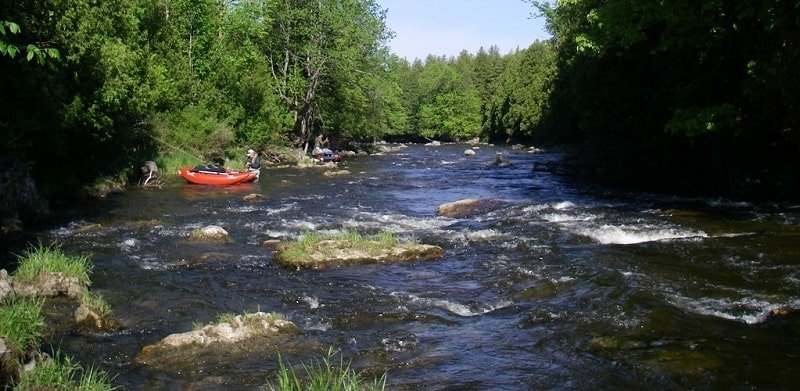 You can cover miles of water in fly fishing boats
