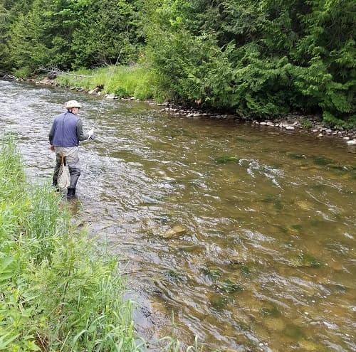 Fishing a small stream for trout.