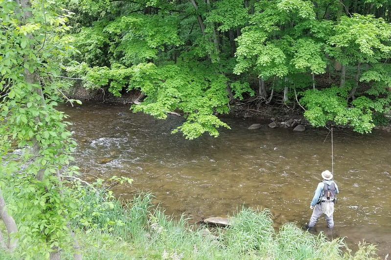 Fly Fishing Nymphs on a trout river