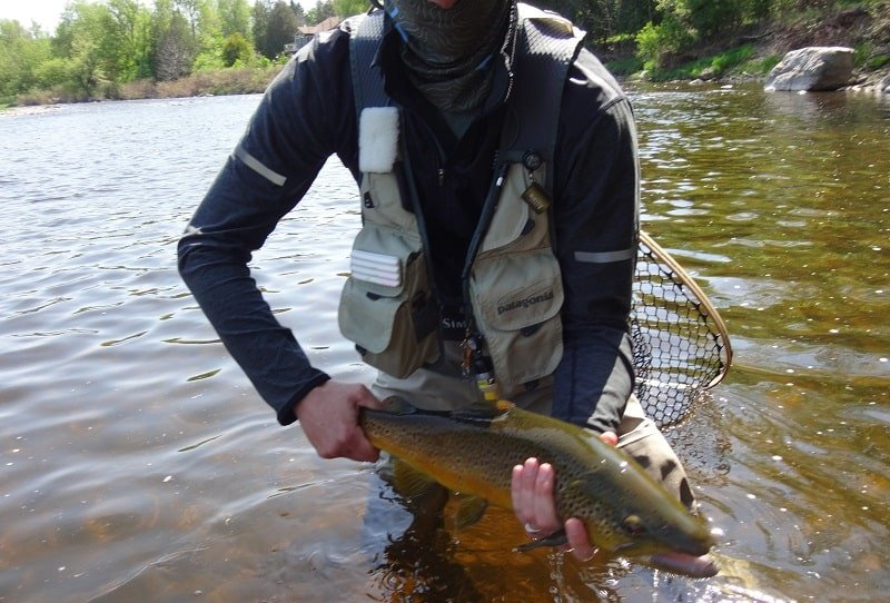 Bending down in a fishing vest to release a fish