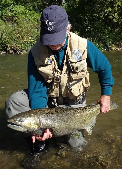 Learning how to fish for great lakes salmon put this angler onto this big Chinook salmon