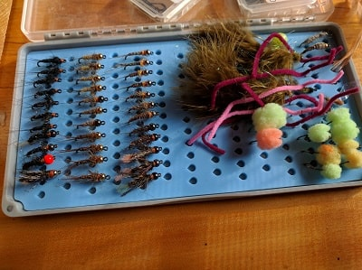 Euro Nymphing Steelhead: Everything You Need To Know